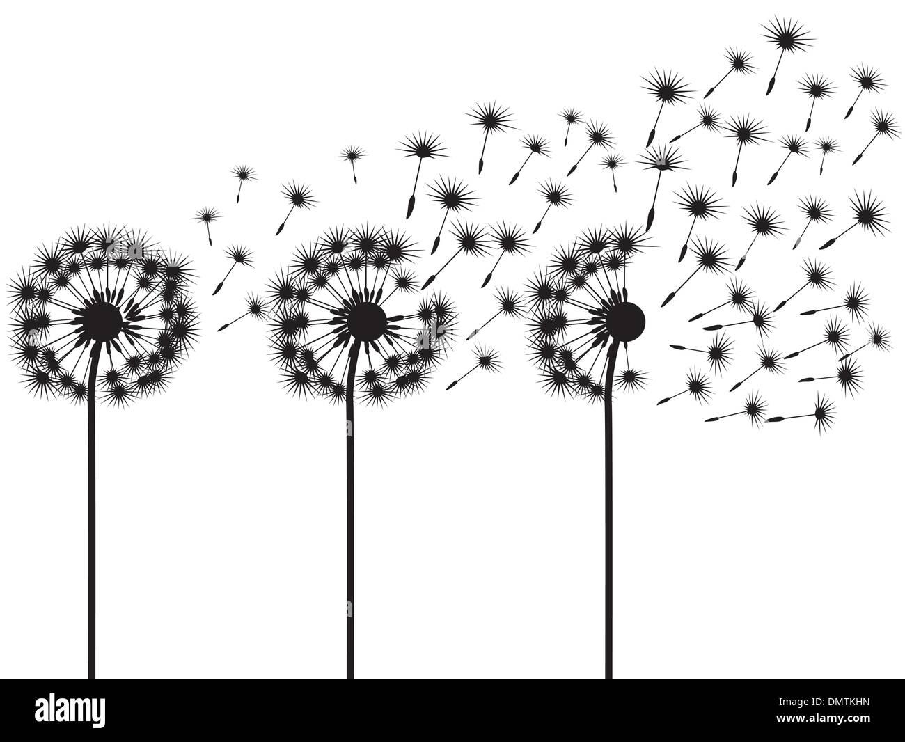 three dandelions - Stock Vector