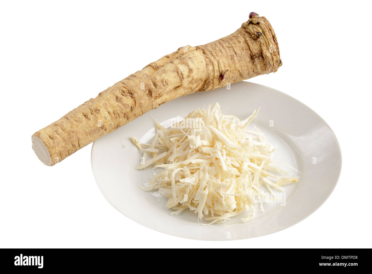 Horseradish, whole and grated - Stock Image
