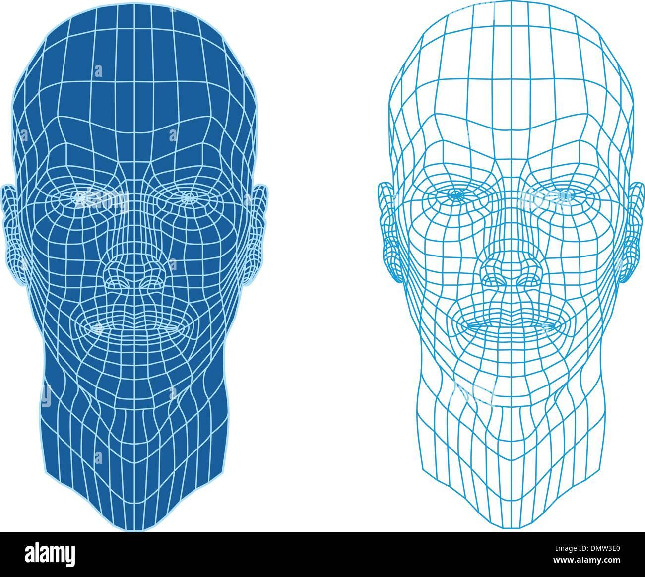 mesh head, vector - Stock Image