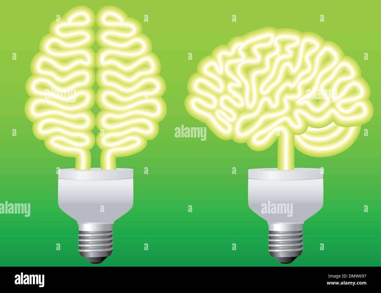 bulb brain, vector - Stock Image