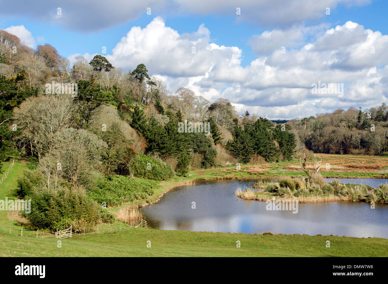 The landscaped gardens at Caerhays castle estate in Cornwall, UK - Stock Image