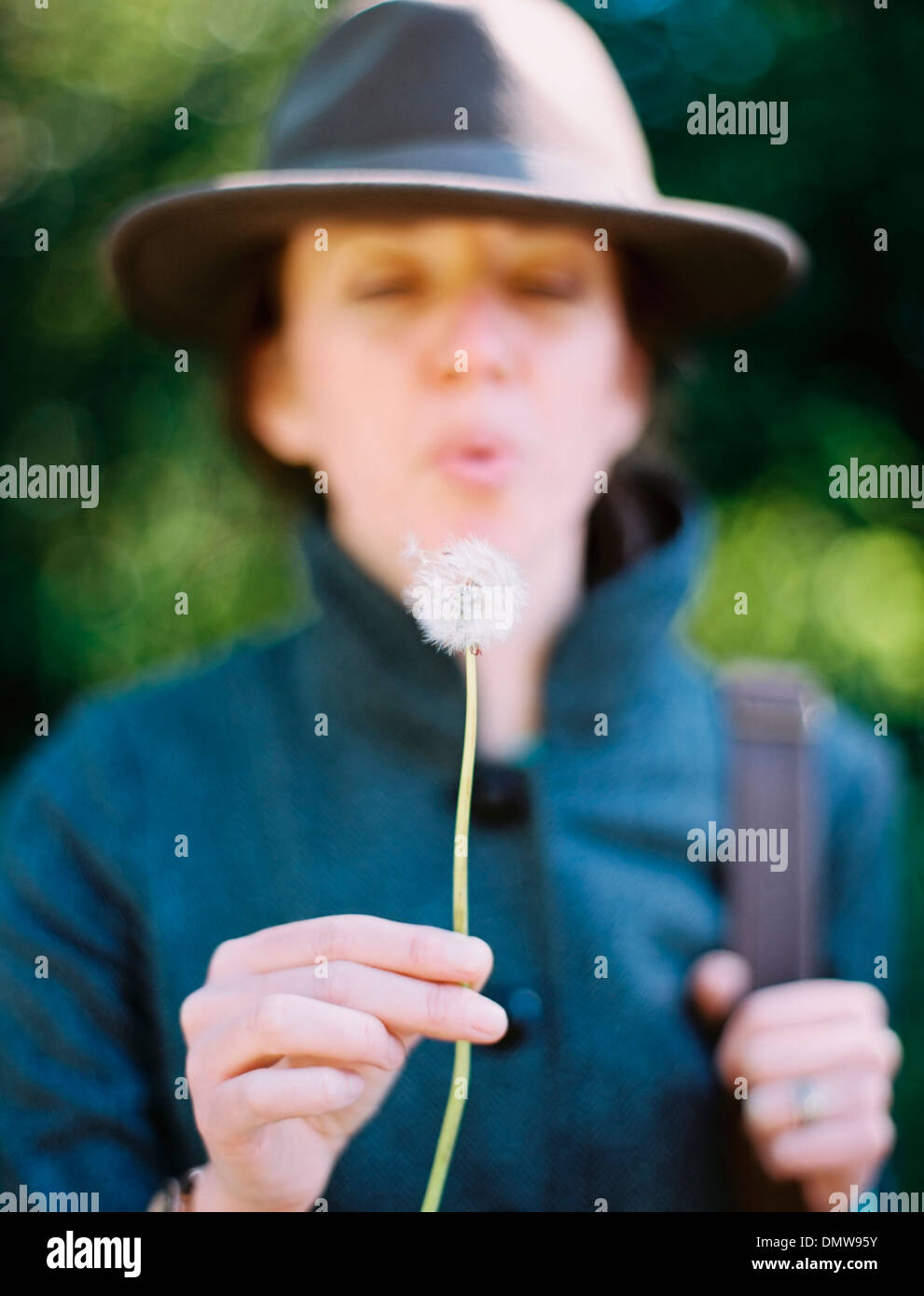 A woman blowing a dandelion clock seedhead. A traditional game. - Stock Image