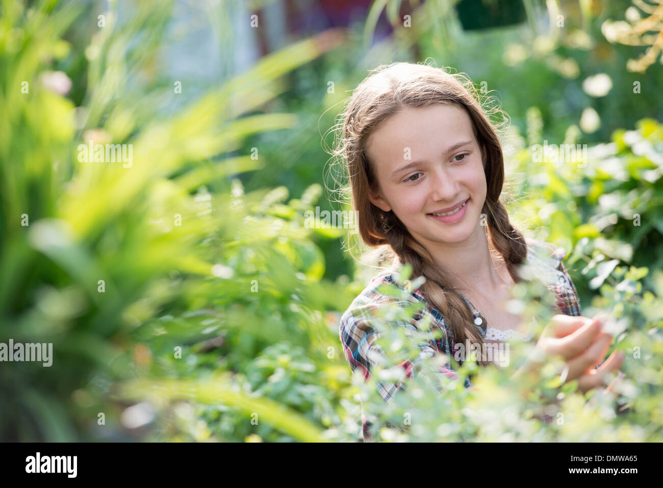 Summer on an organic farm. A young girl in a plant nursery full of flowers. - Stock Image