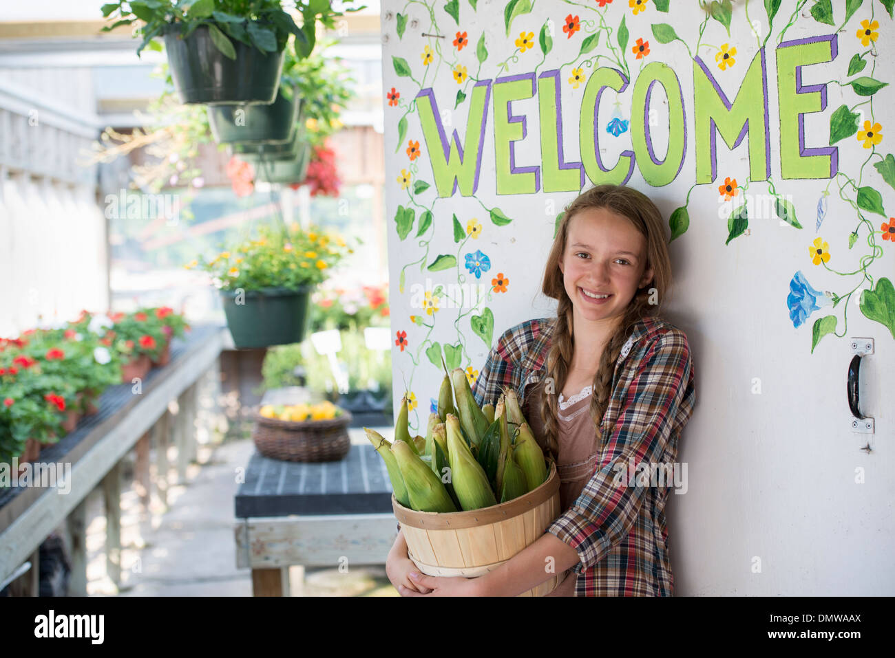 Summer on an organic farm. A girl holding a basket of fresh corn  by  Welcome sign. - Stock Image