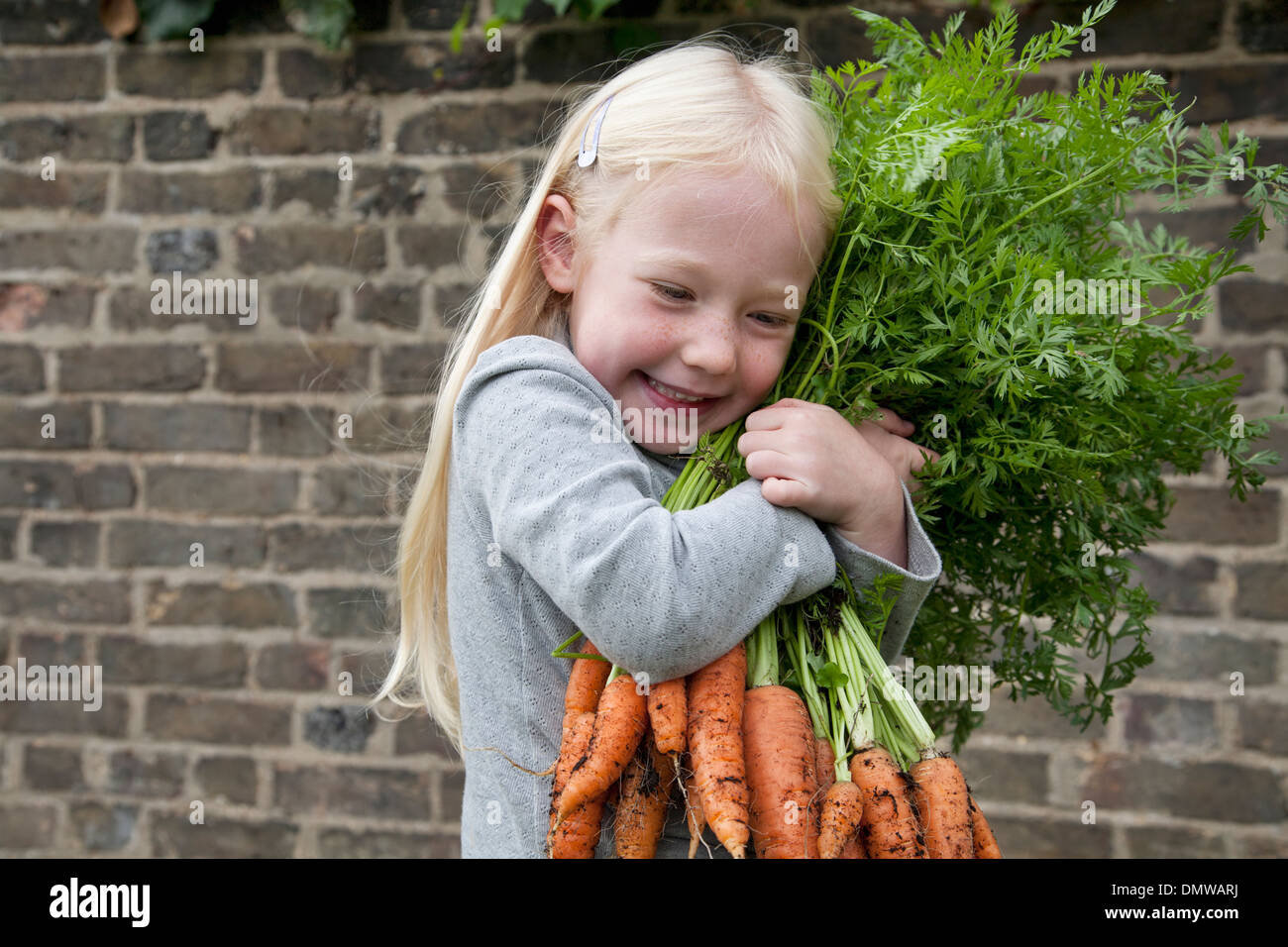 A young girl holding a large bunch of carrots. - Stock Image