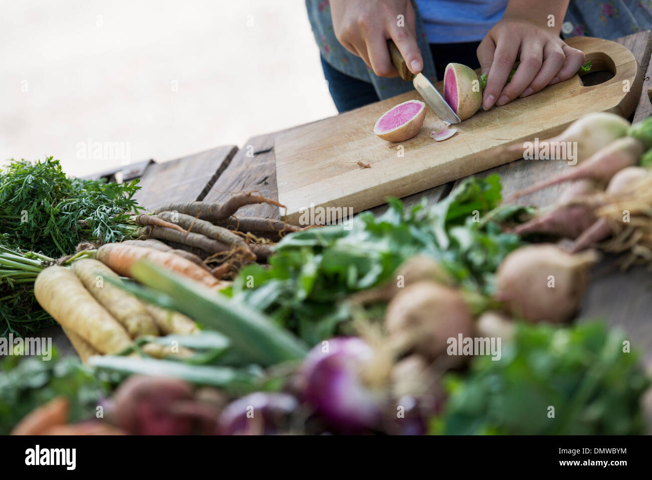 A person chopping freshly picked vegetables and fruits. - Stock Image