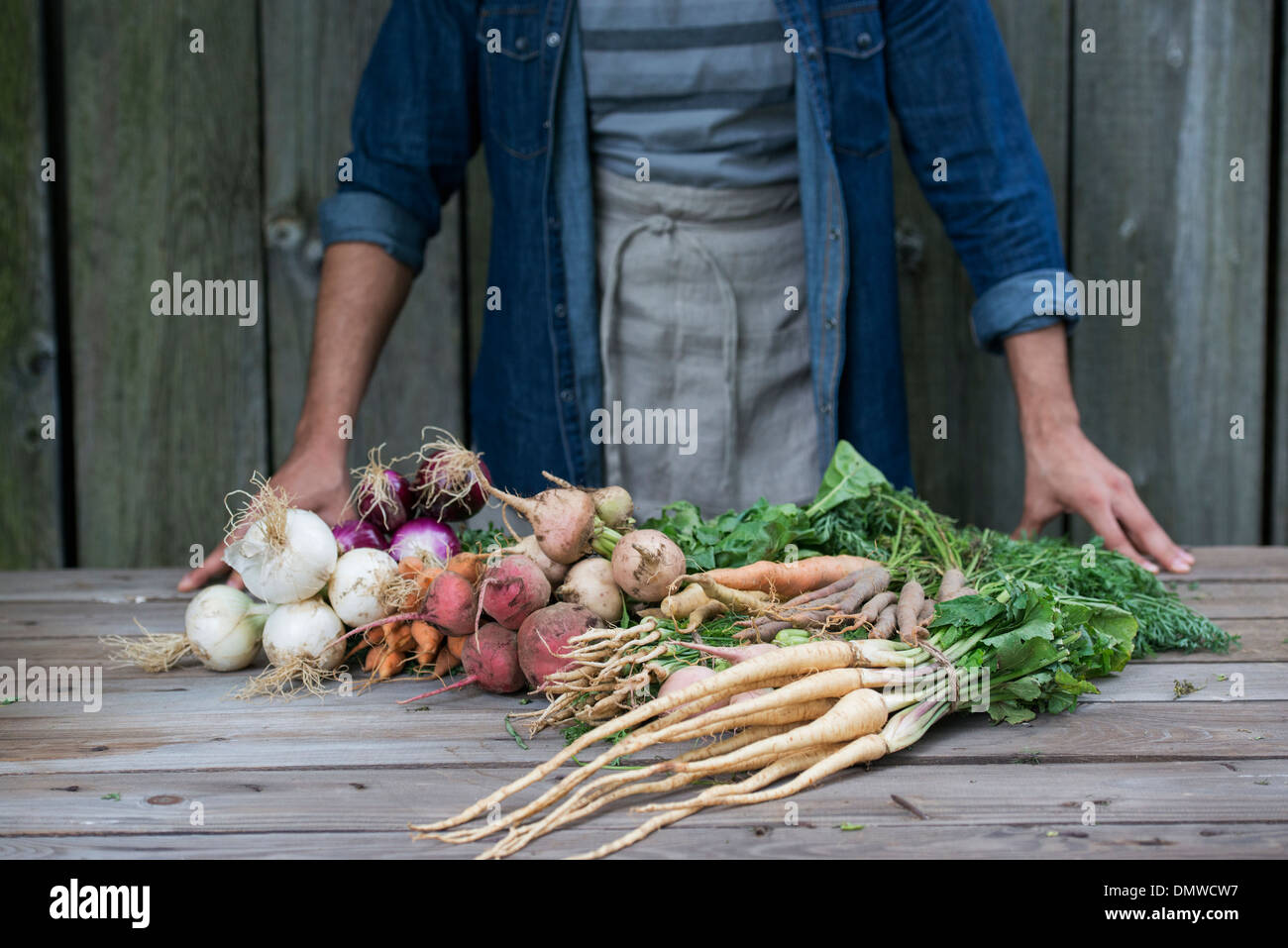 A man sorting freshly picked vegetables on a table. - Stock Image