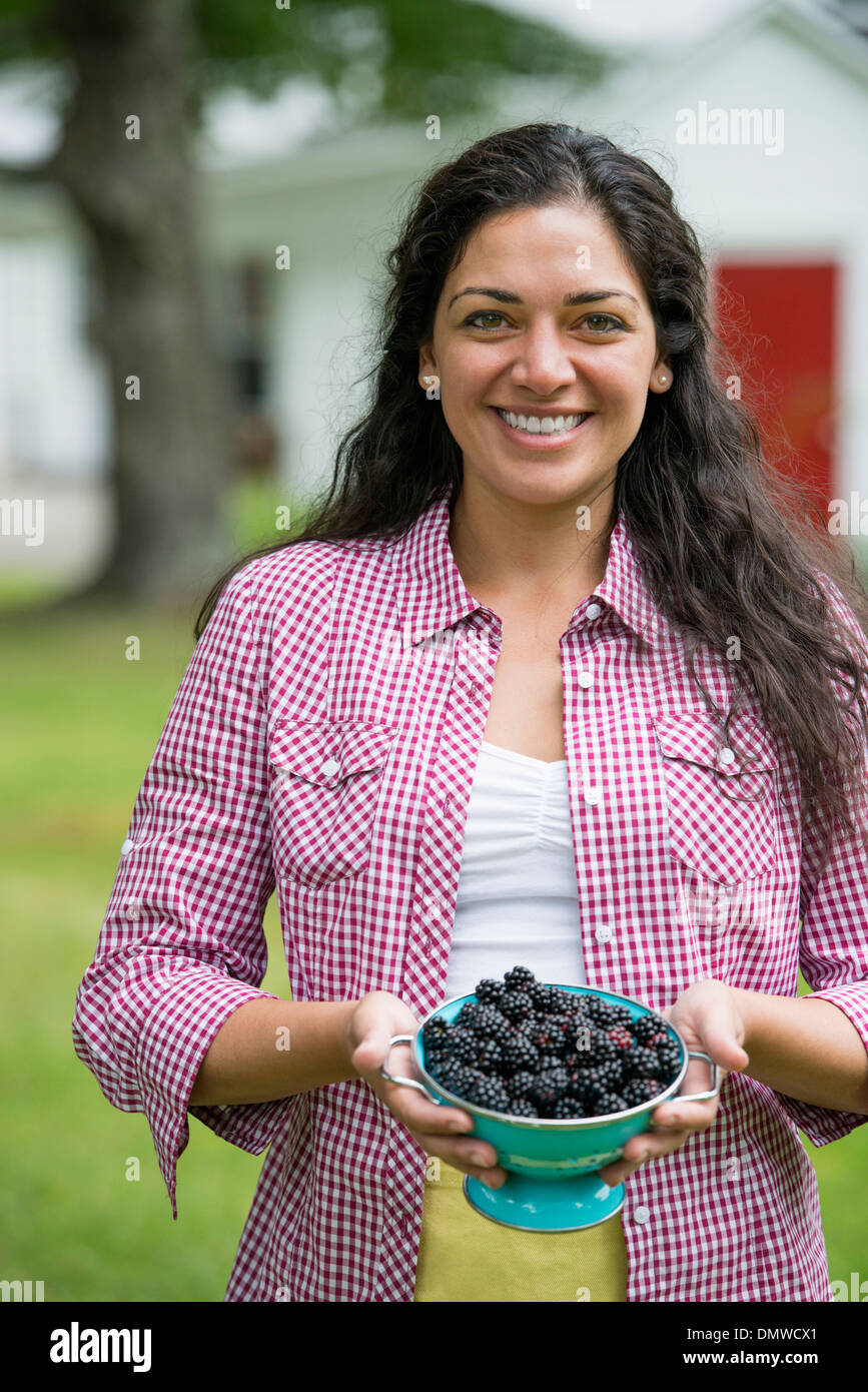 A woman holding a bowl of freshly picked blackberries. - Stock Image