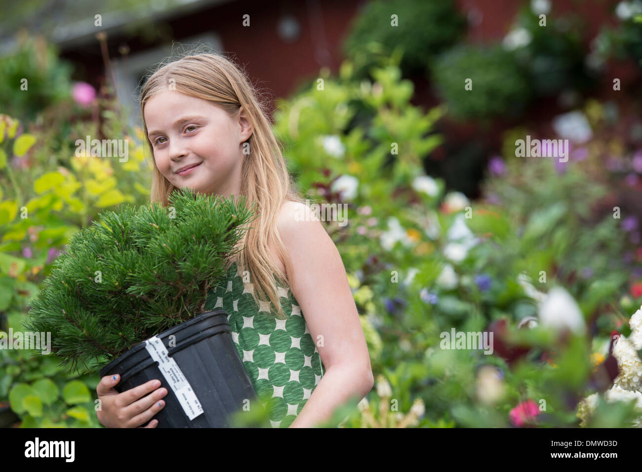 An organic flower plant nursery. A young girl carrying a plant in a pot. - Stock Image