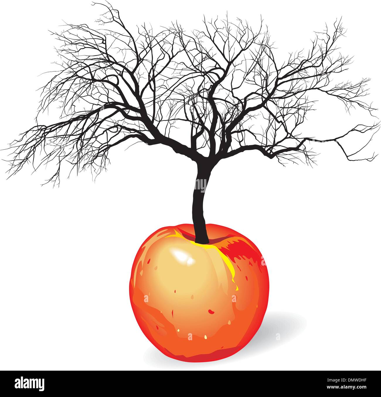 apple tree from fruit - Stock Vector