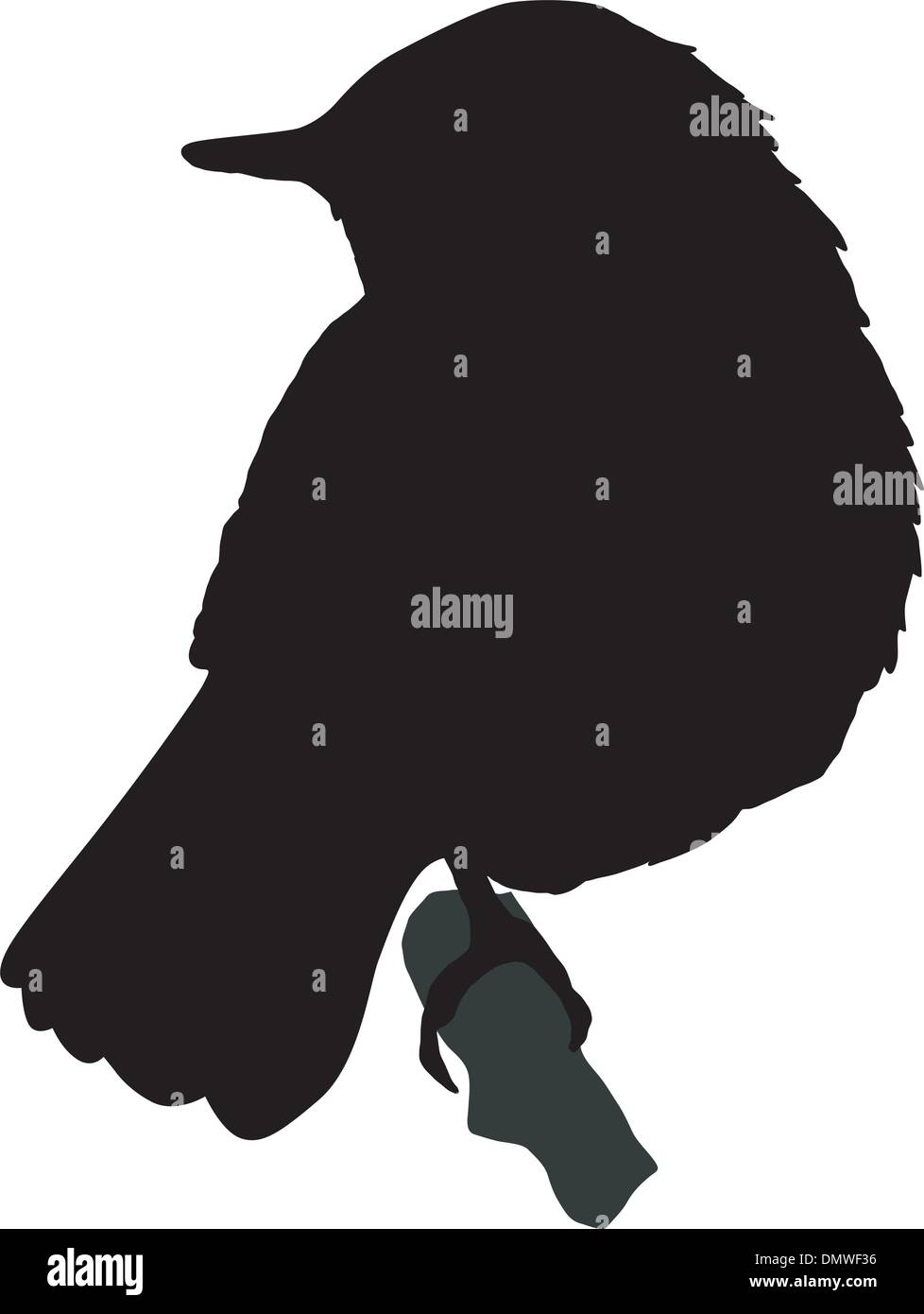 Illustration For The Nightingale Stock Vector Images