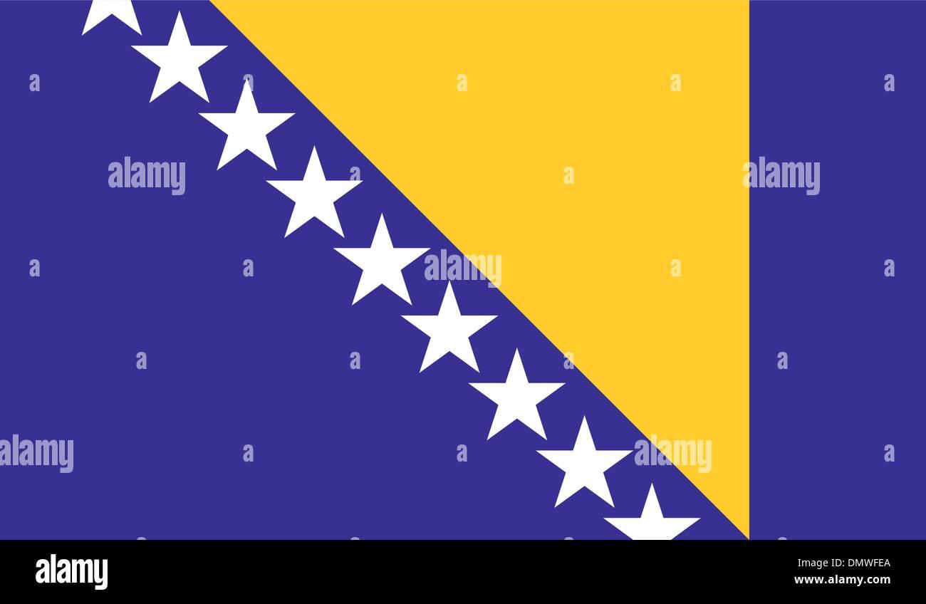 Bosnia and Herzegovina Flag - Stock Vector