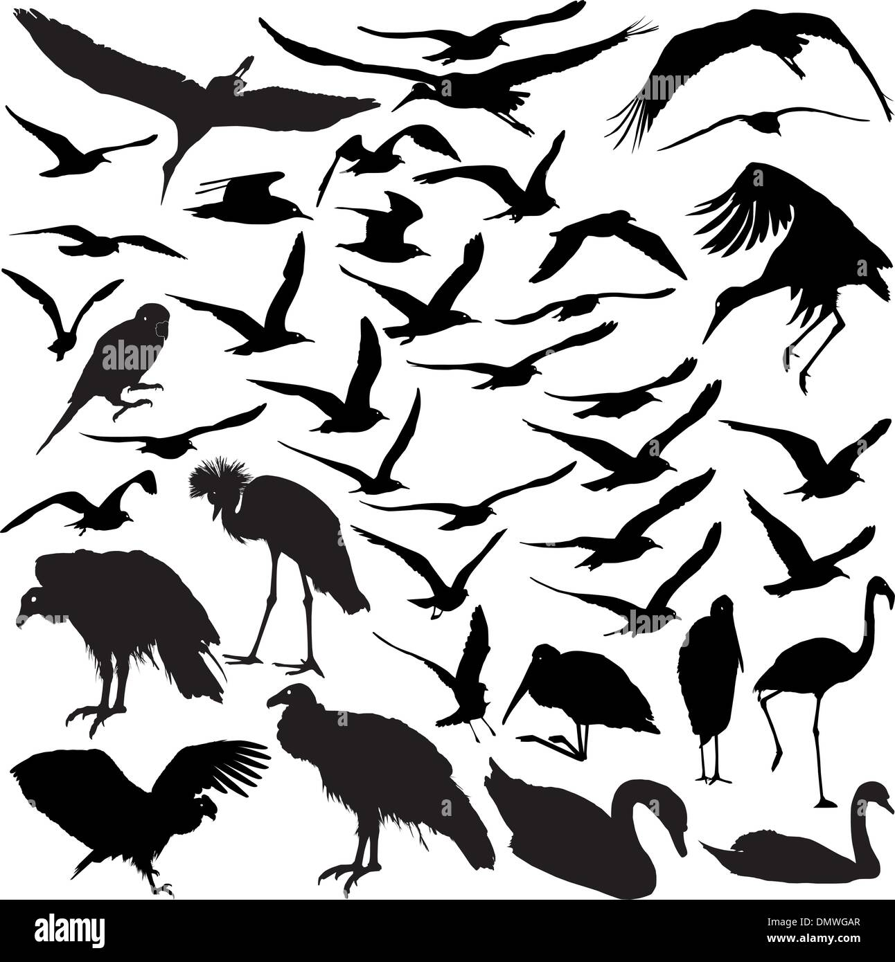 Crow Flying Stock Vector Images - Alamy