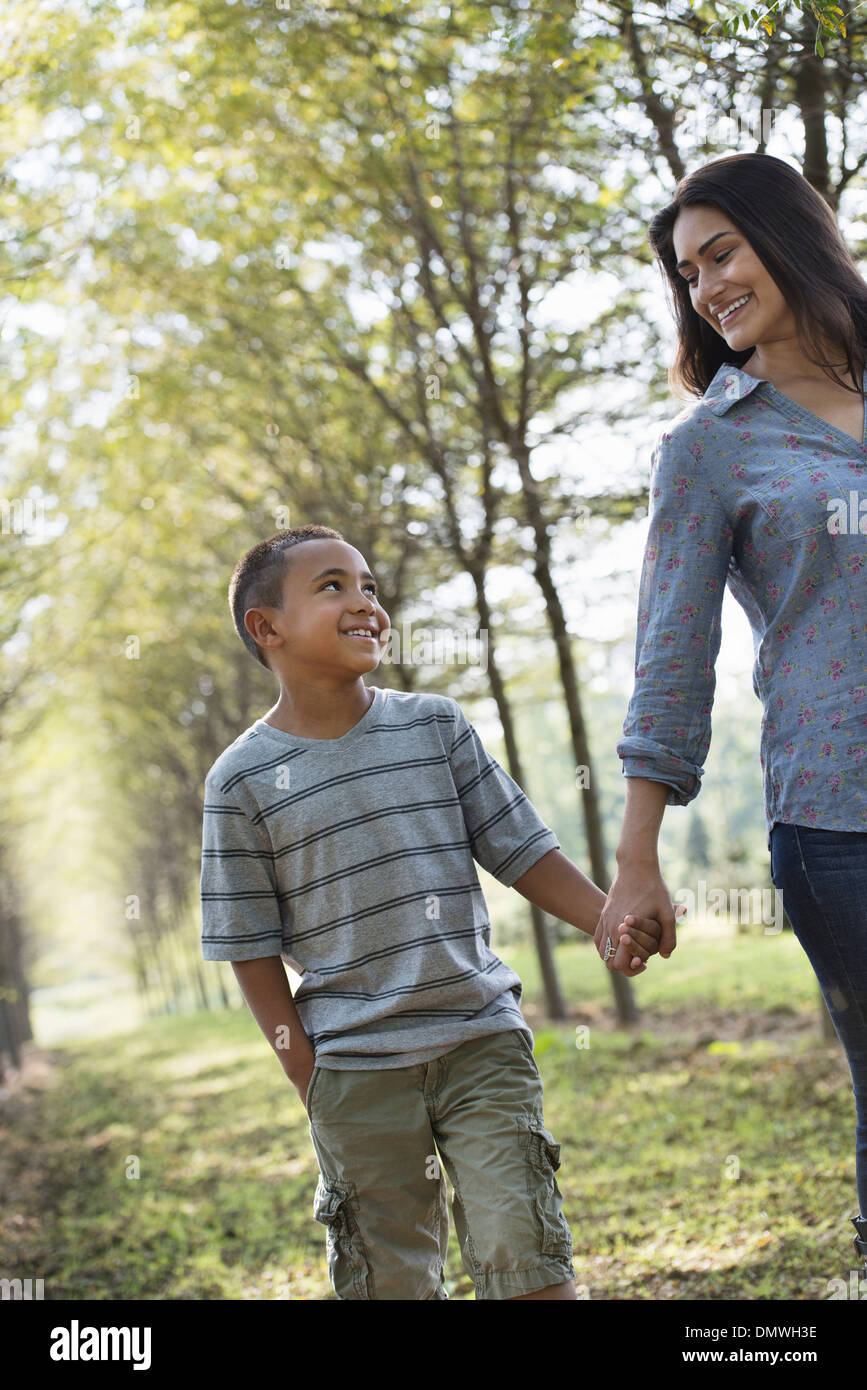 A woman and a young boy holding hands walking in woods. - Stock Image