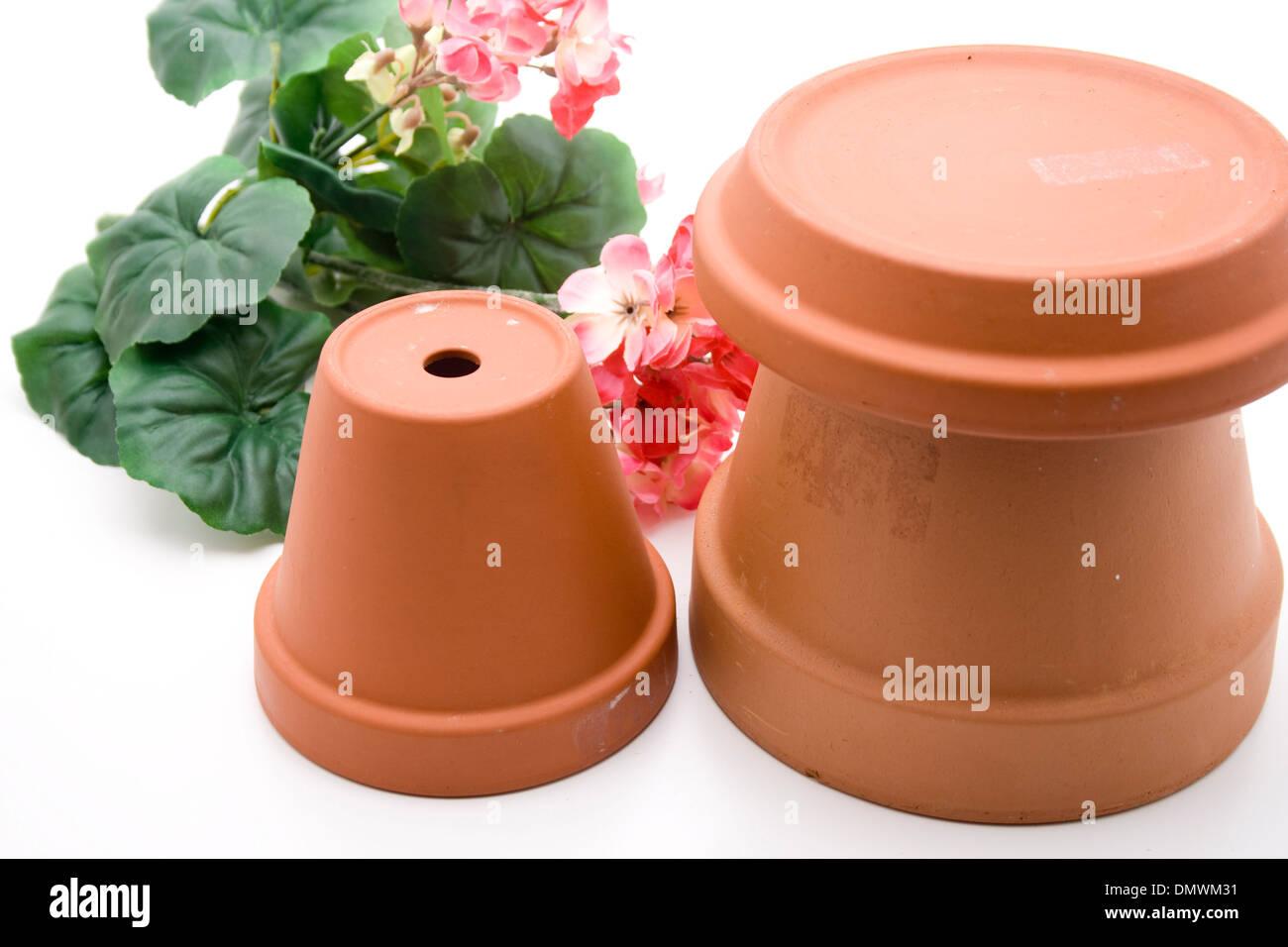 Plant pot with geranium - Stock Image
