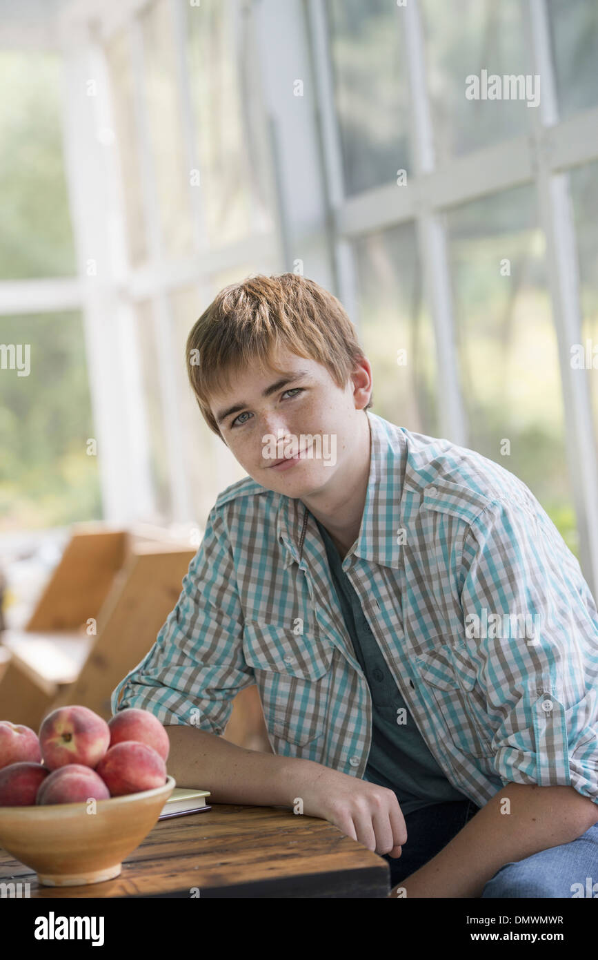 A young boy seated at a table. - Stock Image