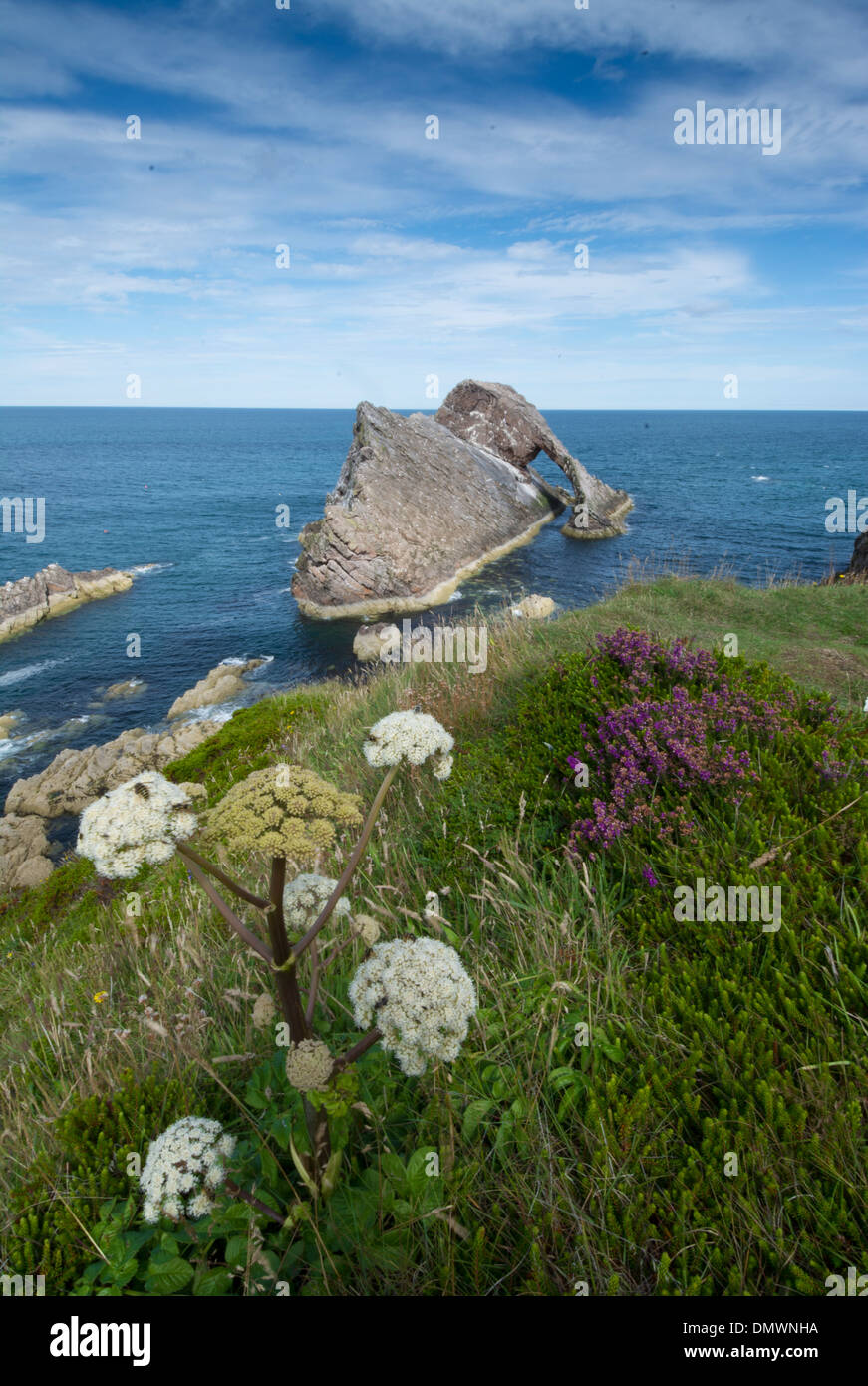 bow and fiddle rock portknockie moray coast - Stock Image