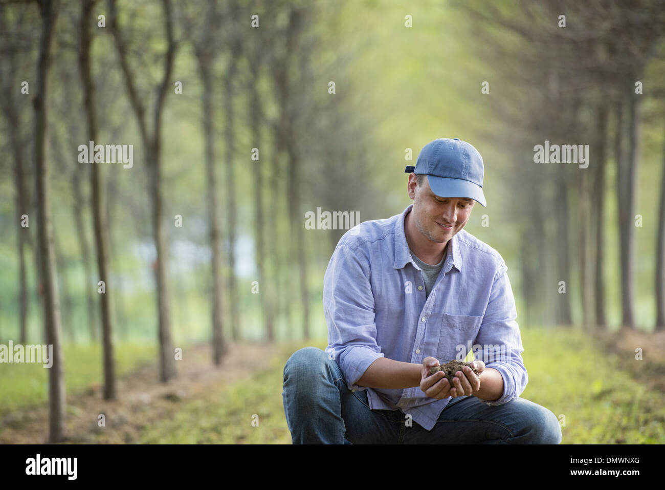 A man crouching and examining a handful of soil. - Stock Image