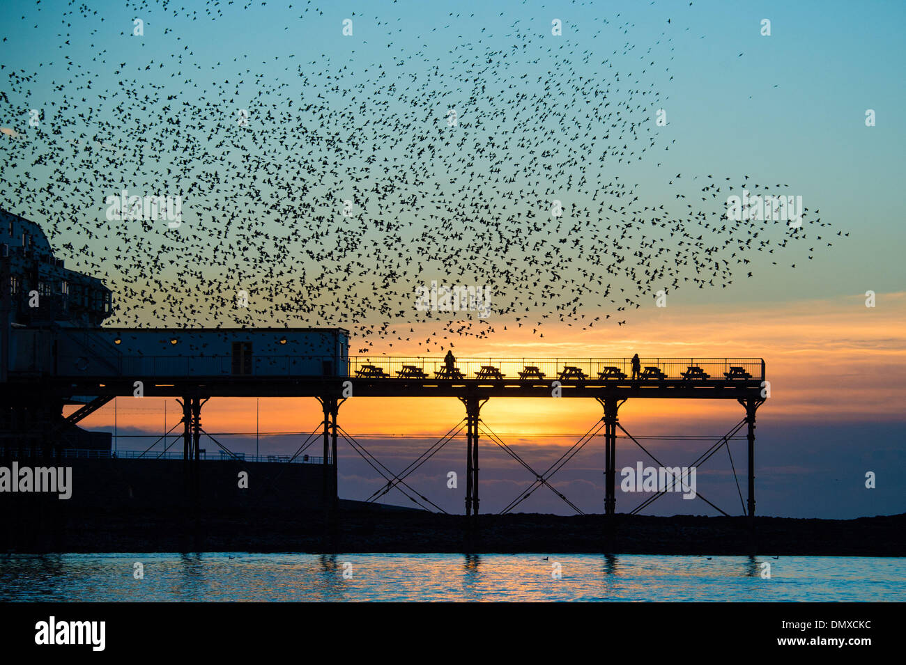 Aberystwyth, Wales, UK. 17th Dec 2013.   At the end of a day of fine sunshine, tens of thousands of starlings congregate in the air above the Victorian seaside pier in Aberystwyth Wales UK. The nightly murmuration of the birds at dusk draws people from all over the country. The weather in the UK is set to turn wetter and windier in the coming days, with gales blowing in from the west  photo Credit:  keith morris/Alamy Live News - Stock Image