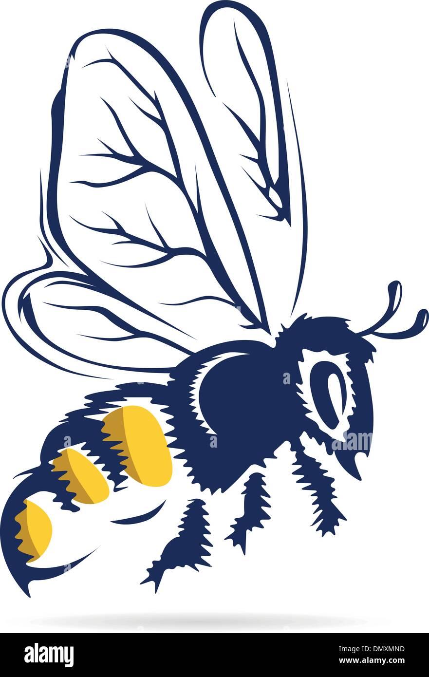 honey bee - Stock Vector