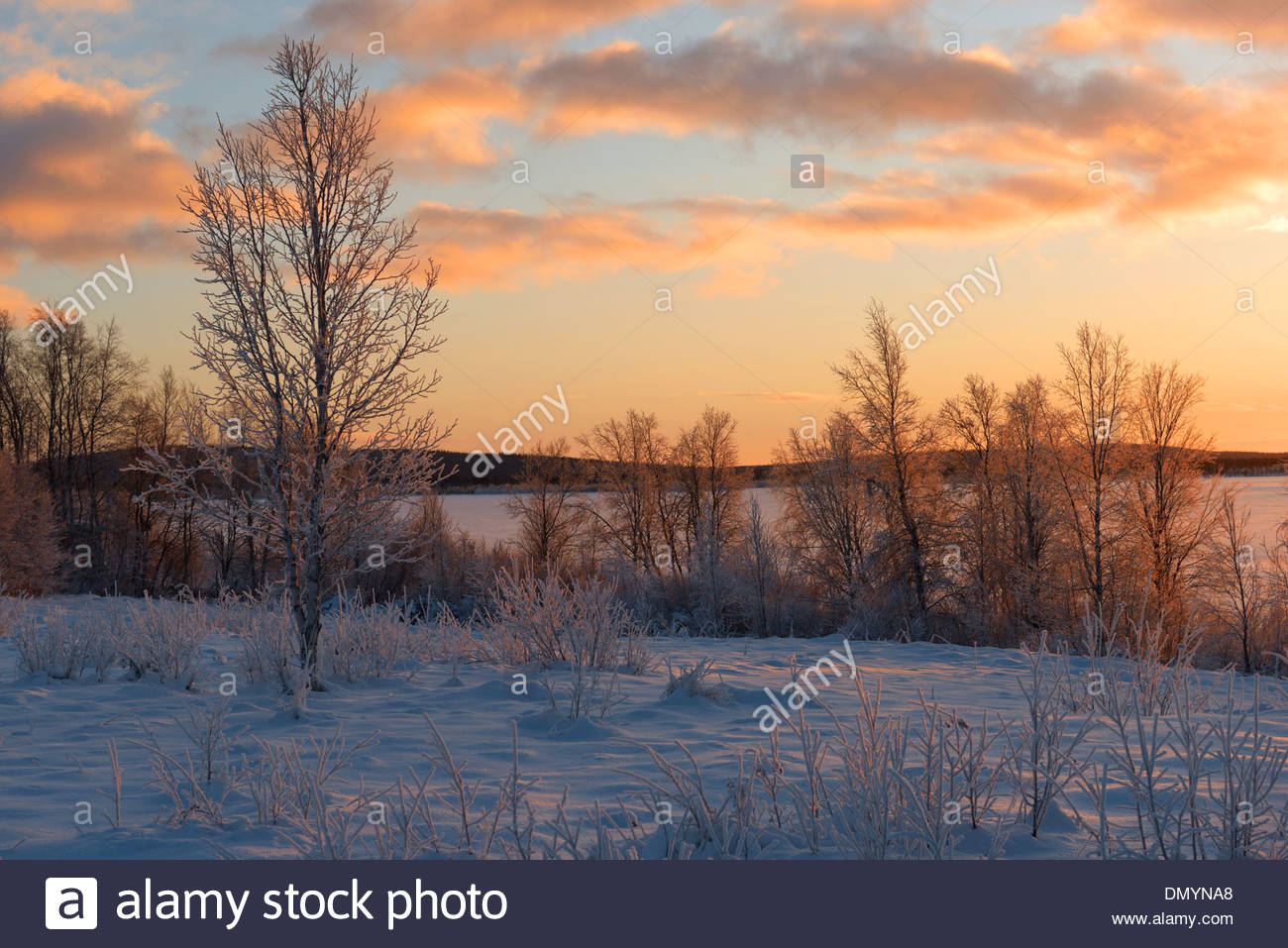 The stunning sunset across the fields and forests of Kiruna, Northern Sweden. - Stock Image