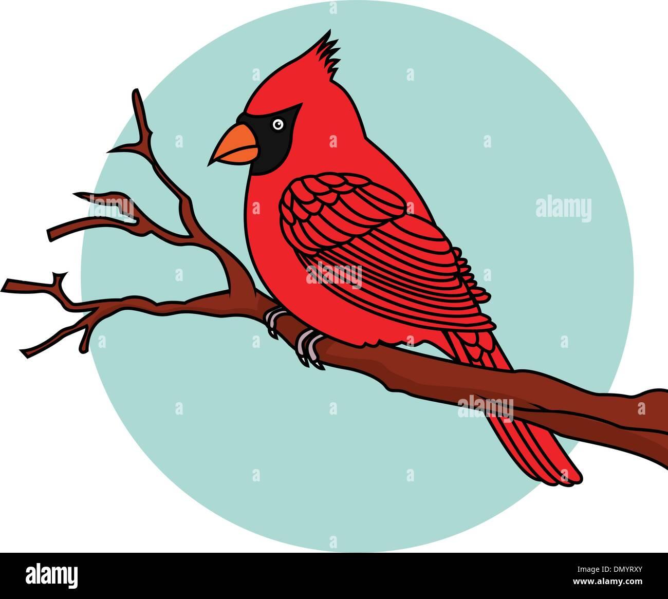 Red Bird cardinals - Stock Vector
