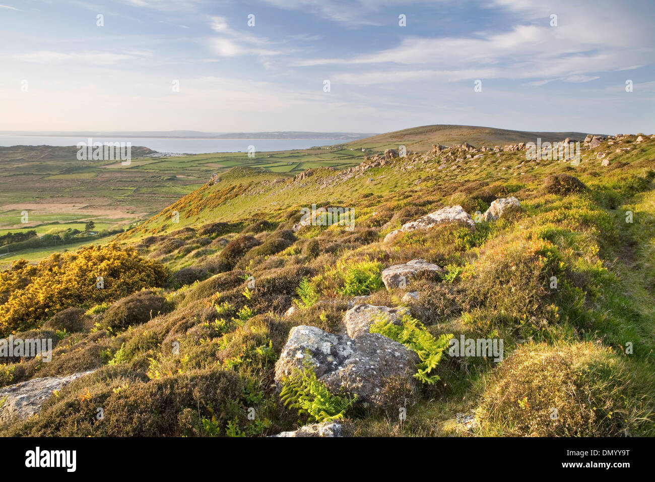 Gorse, bracken and boulders on Rhossili Down near Llangennith, Gower Peninsula, overlook Rhossili Bay at sunset. Stock Photo