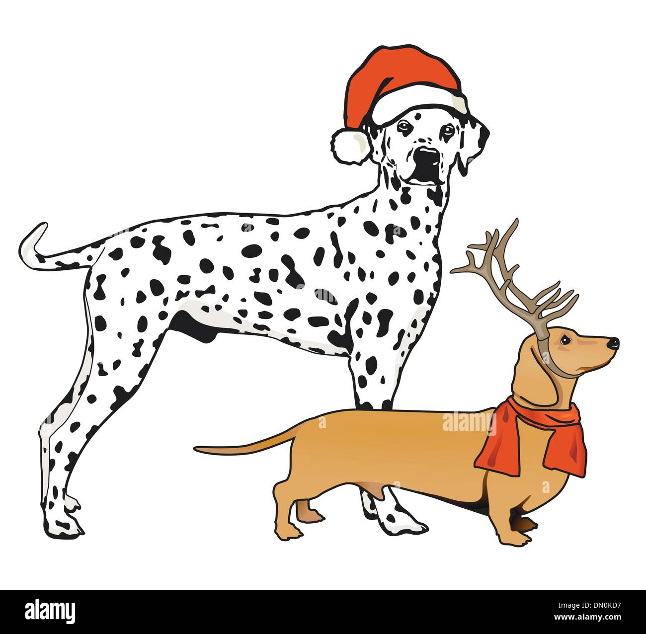 Dachshunds and Dalmatian - Stock Vector
