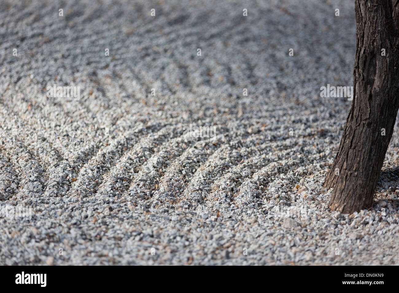Peaceful Zen garden with raked sand and single tree trunk.  Calm image, strong background, and copy space. - Stock Image
