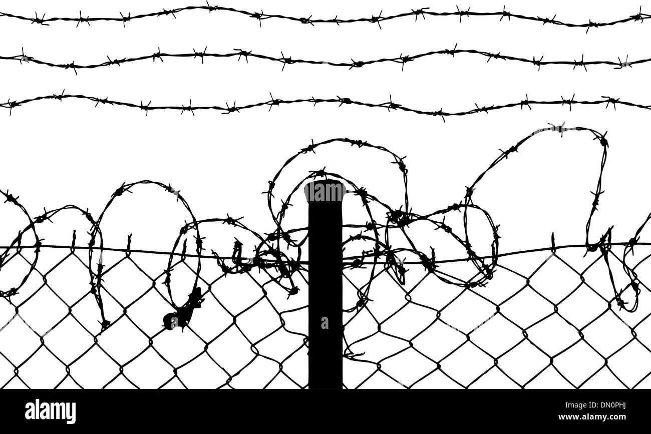 wired fence with barbed wires - Stock Image