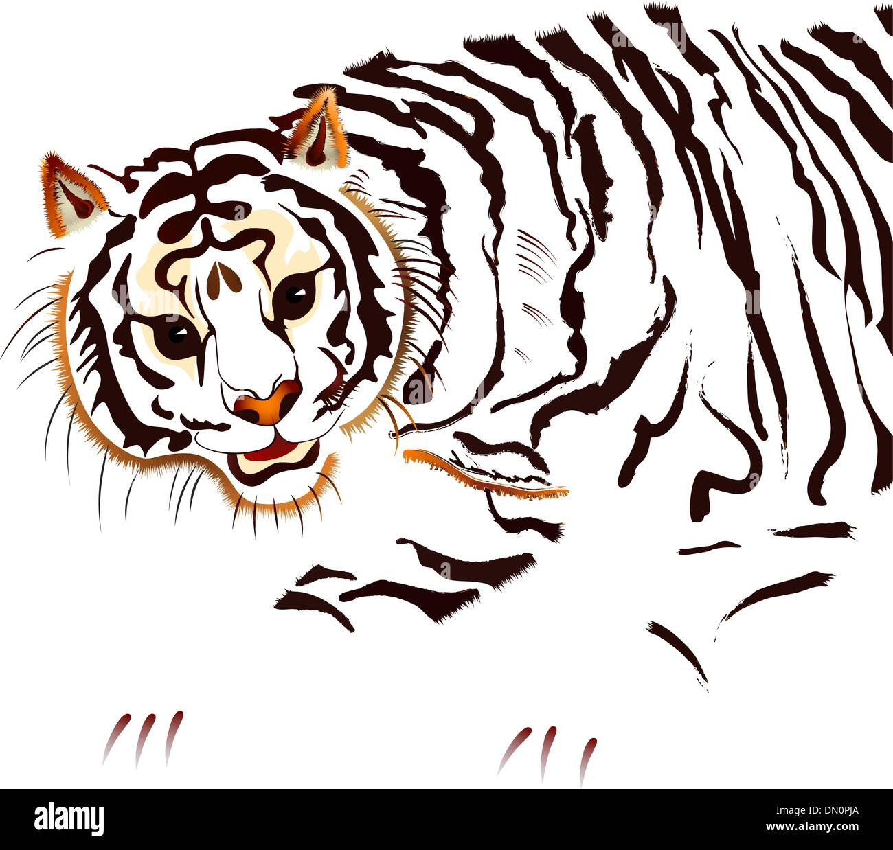Siberian tiger - vector - Stock Vector
