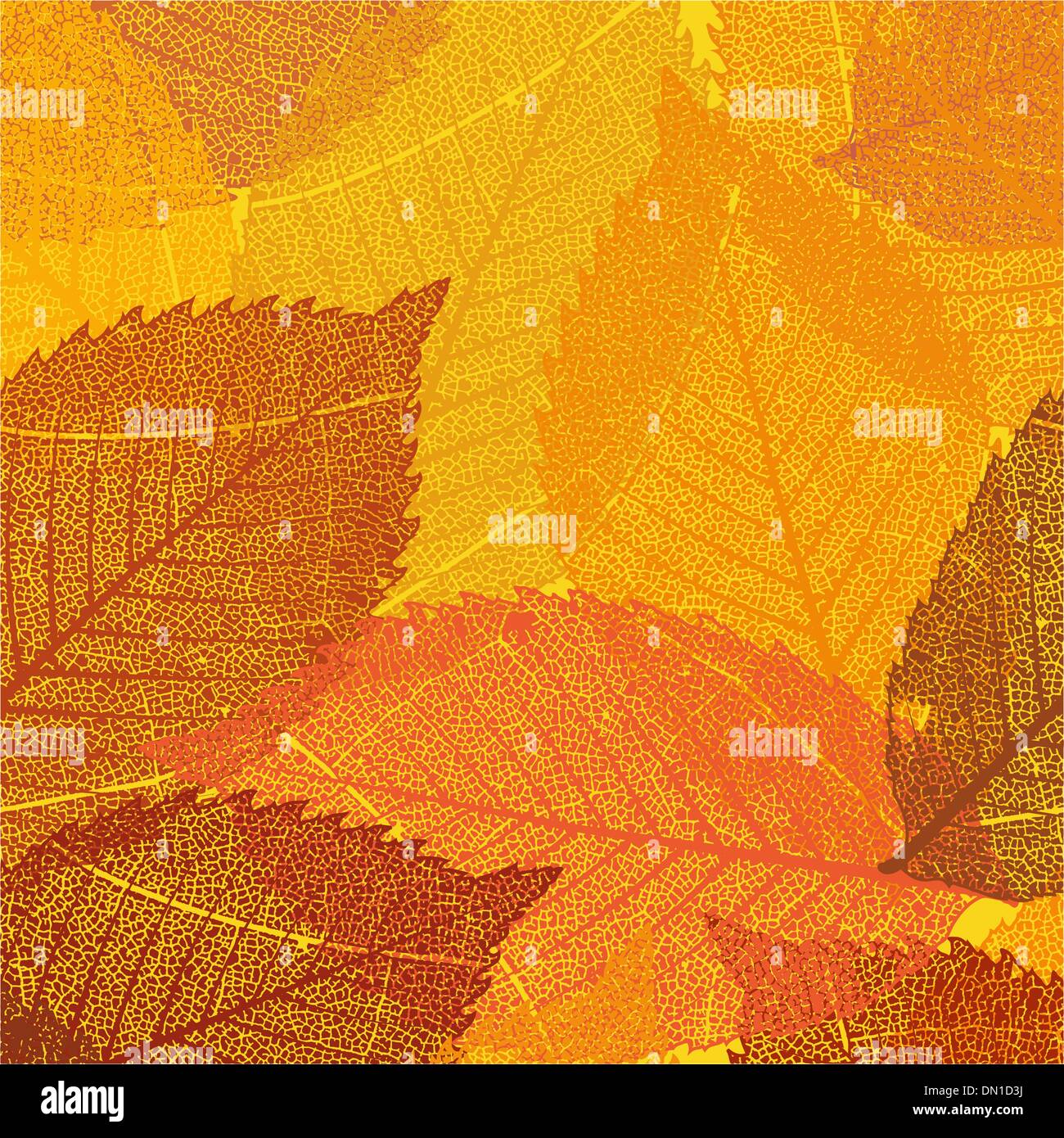 dry autumn leaves template eps 8 stock vector art illustration