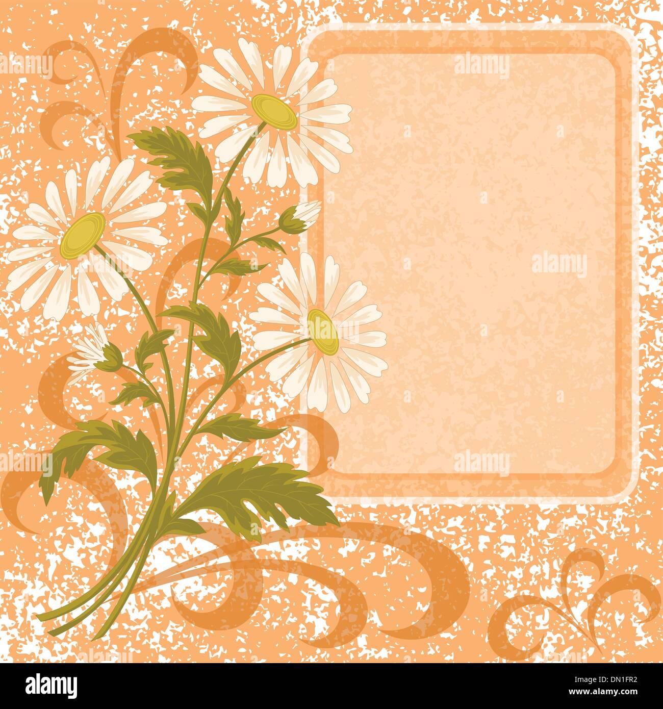 Flower holiday background - Stock Image