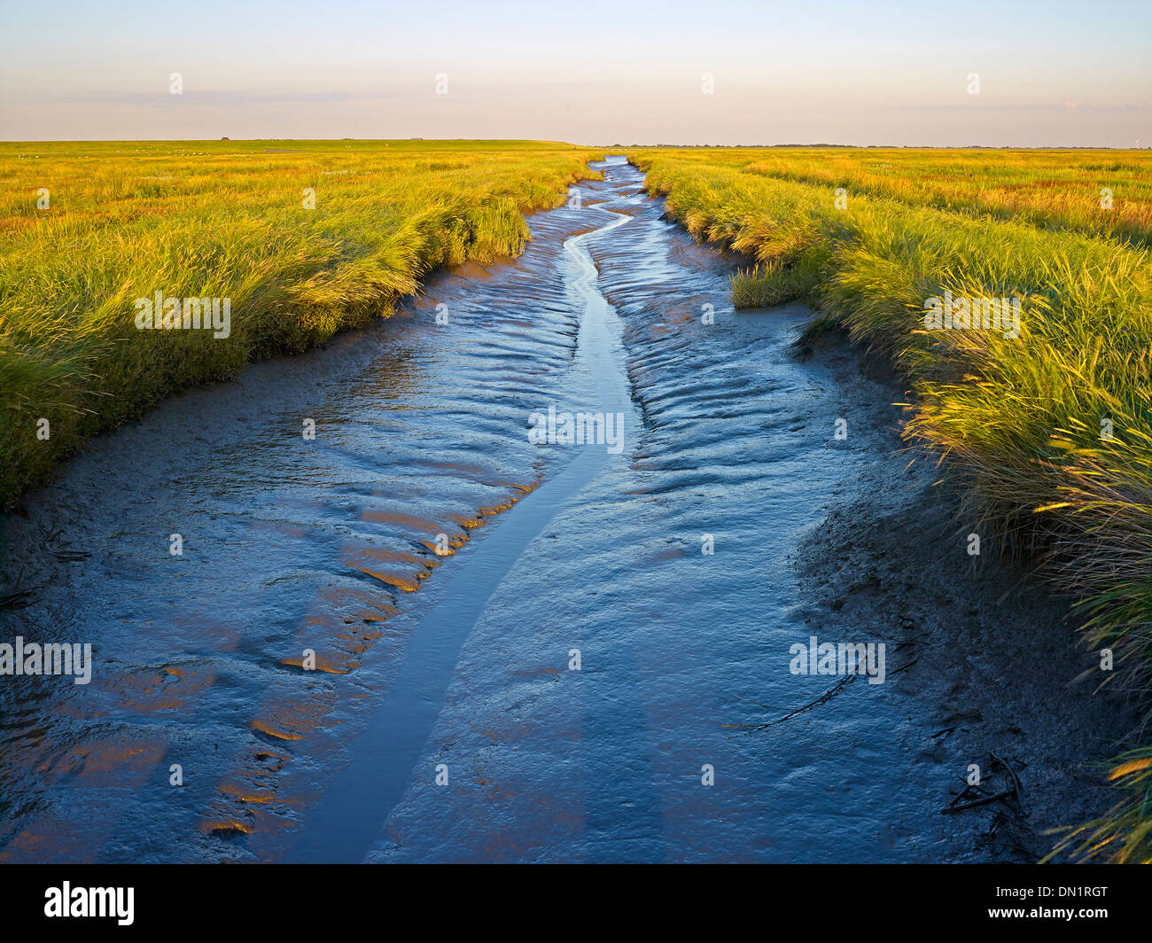 Tidal creek at Westerhever, Eiderstedt peninsula, North Frisia, Schleswig-Holstein, Germany - Stock Image