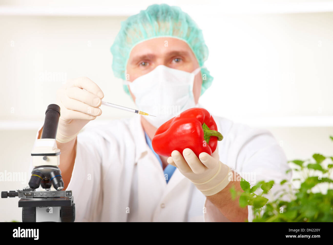 Researcher holding up a GMO vegetable Stock Photo