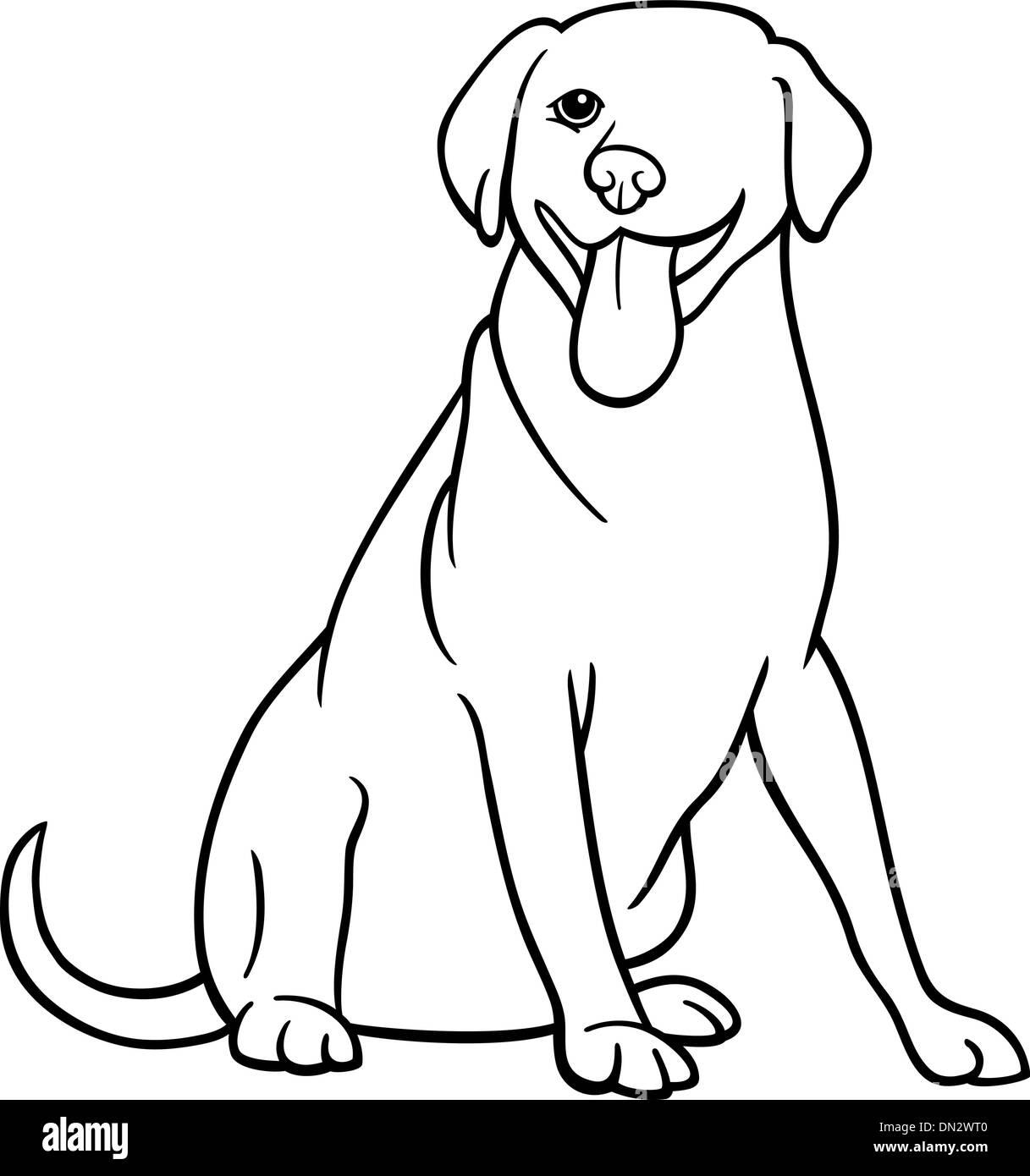 Purebred Black Labrador Retriever Stock Vector Images Alamy