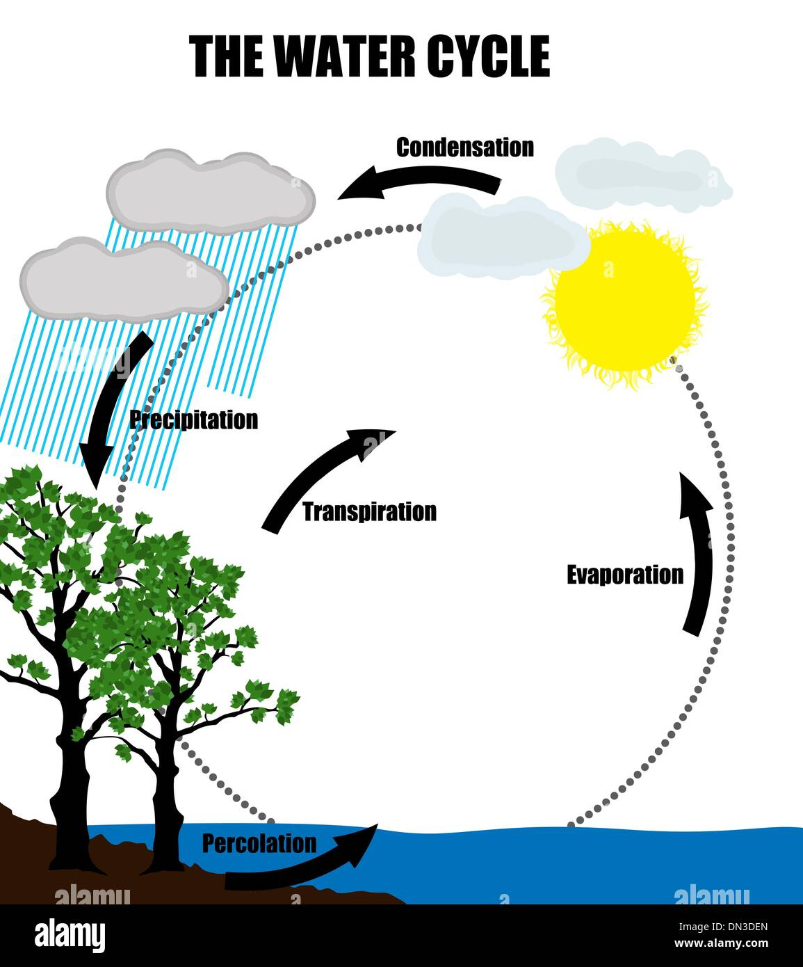 Water Cycle Diagram Stock Photos Water Cycle Diagram Stock