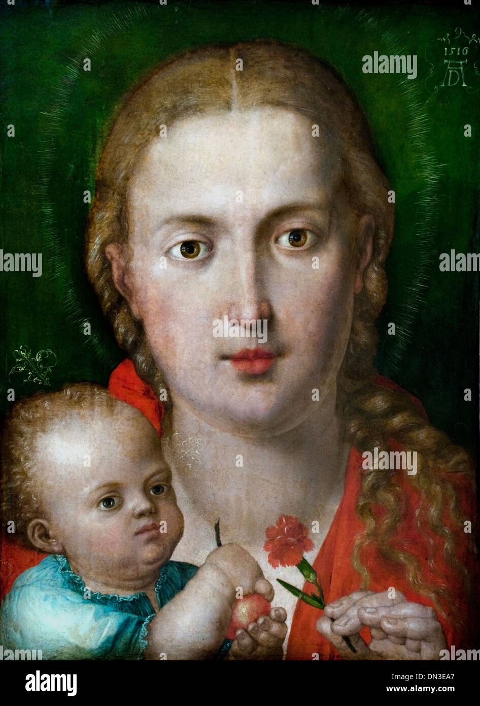 Muttergottes mit der nelke - Madonna with the carnation by ALBRECHT DÜRER (1471-1528) German Germany - Stock Image
