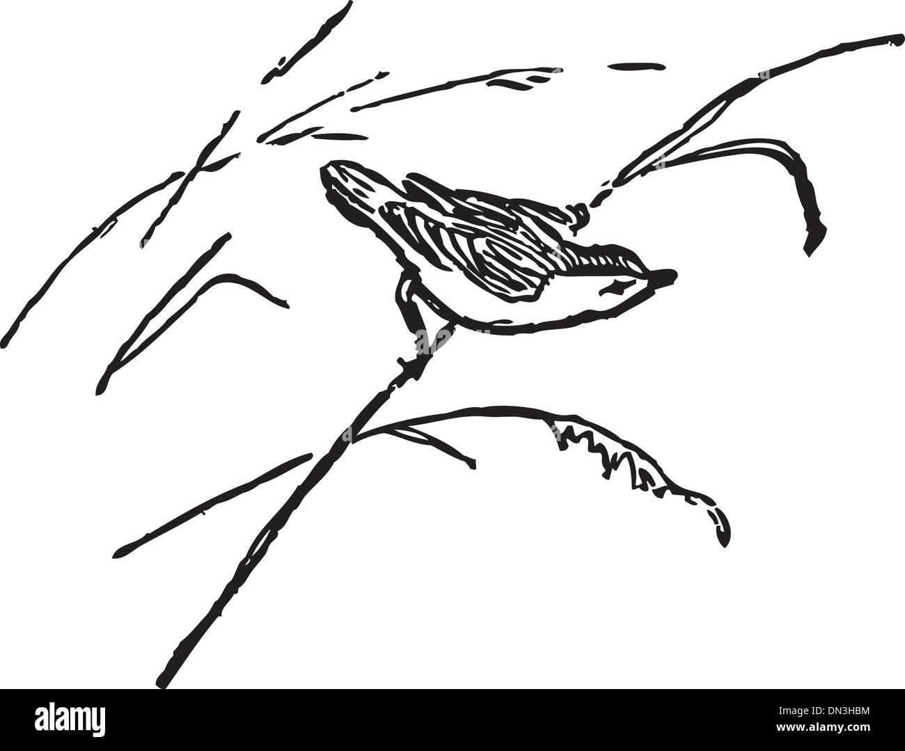 Bird on a cane - Stock Vector