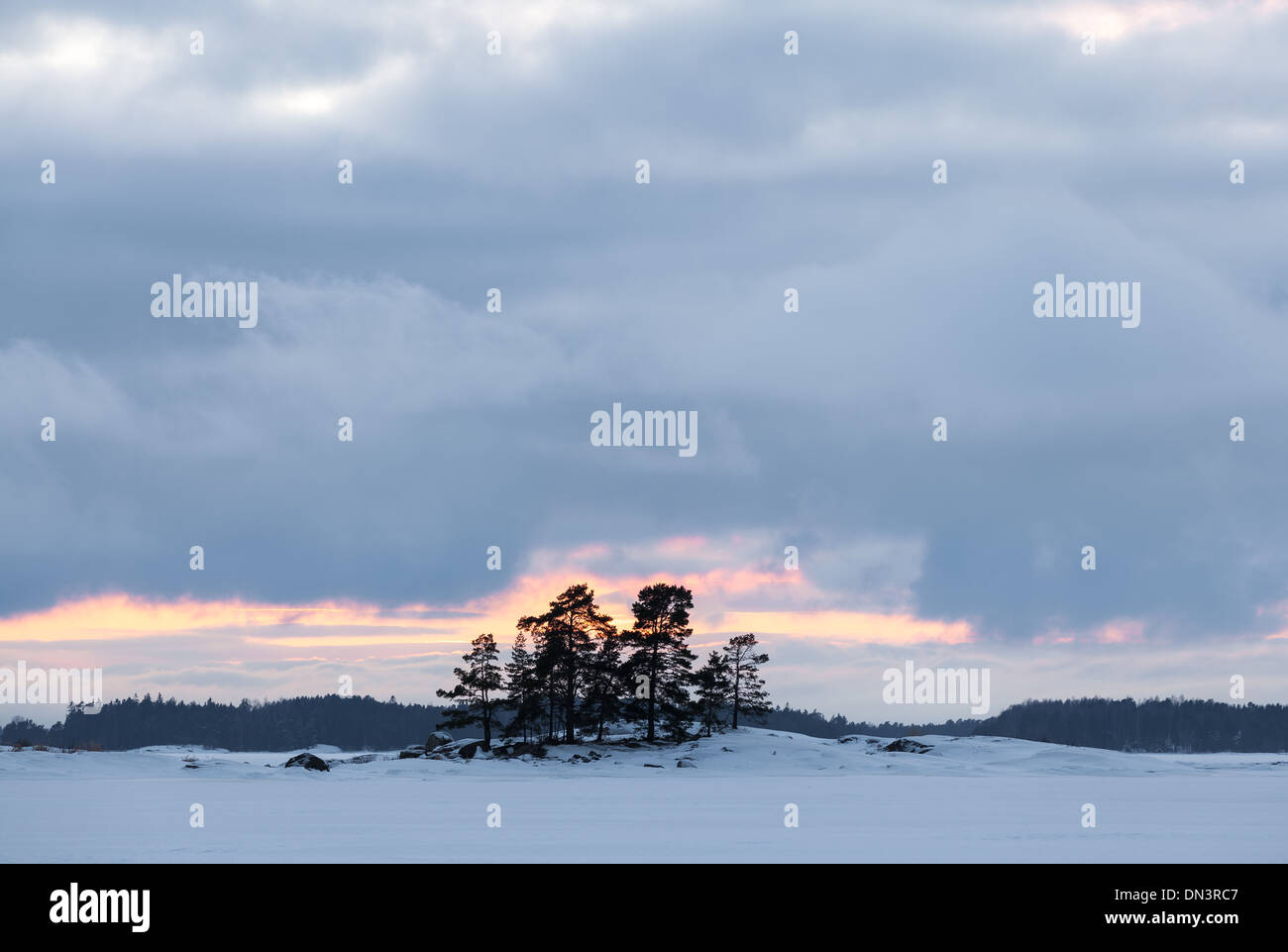 Winter evening on the Baltic Sea - Stock Image