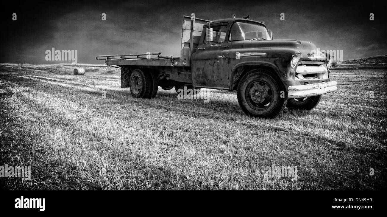 A well used old farm truck sitting in a hay field in Fishtail Stock ...