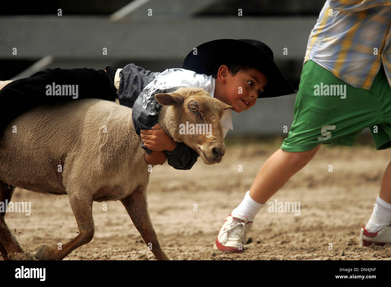Sep 02, 2006; Okeechobee, FL, USA; The Okeechobee Cattlemen's Association Rodeo started Saturday and runs through Labor Day. Here, Luis Santibanez hangs on tight during the Mutton Bustin' which was before the rodeo Saturday. Mandatory Credit: Photo by Libby Volgyes/Palm Beach Post/ZUMA Press. (©) Copyright 2006 by Palm Beach Post - Stock Image