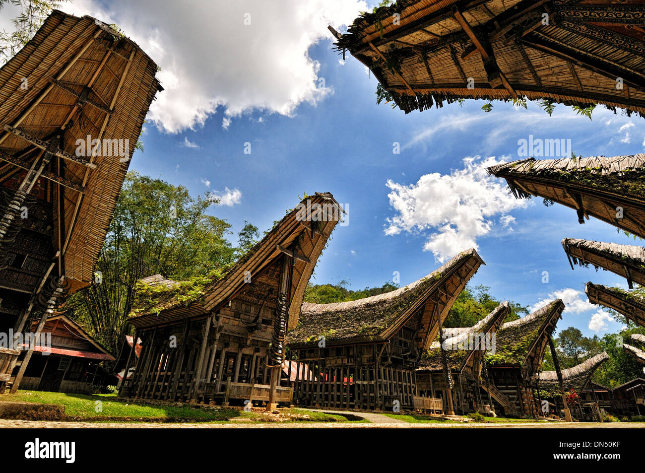 The series of Tongkonan at Kete Kesu, Londa, South Sulawesi - Stock Image