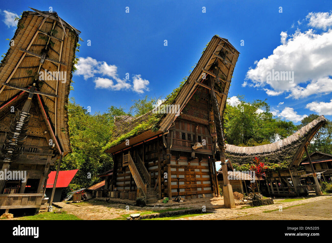 Tongkonan as a museum, South Sulawesi - Stock Image