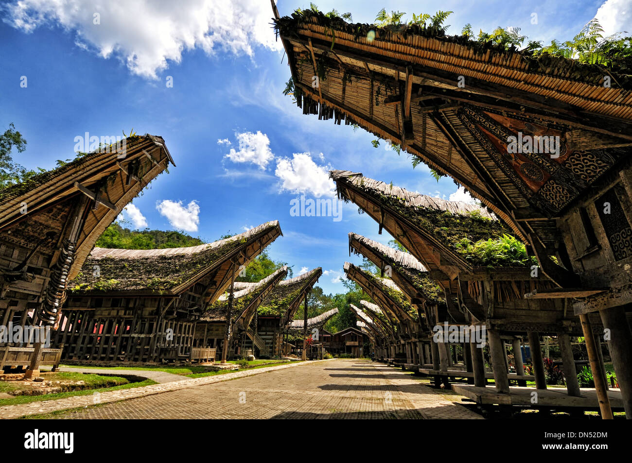 Tongkonan in a Torajan village, South Sulawesi Stock Photo