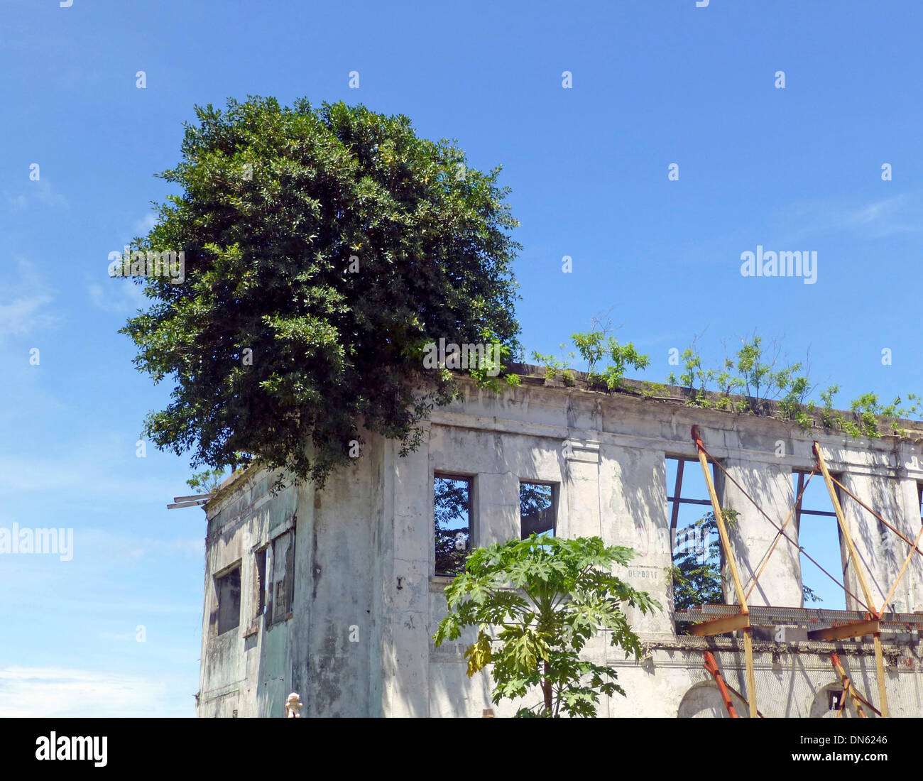 Dilapidated house in the historic centre Casco Viejo, also Casco Antiguo or San Felipe, Panama City, Panama - Stock Image