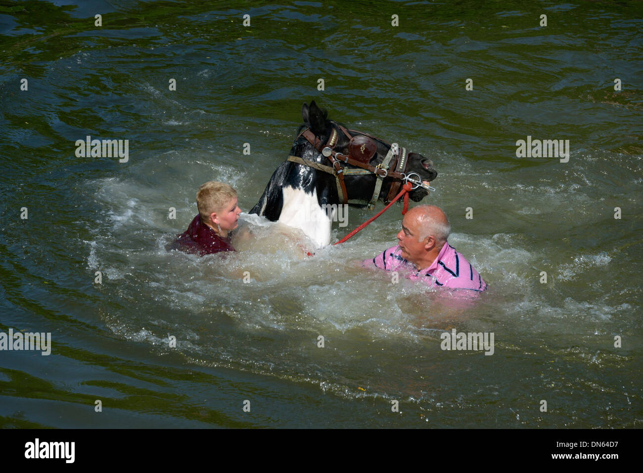 Gypsy travellers with horse in River Eden. Appleby Horse Fair, Appleby-in-Westmorland, Cumbria, England, United Kingdom, Europe. - Stock Image