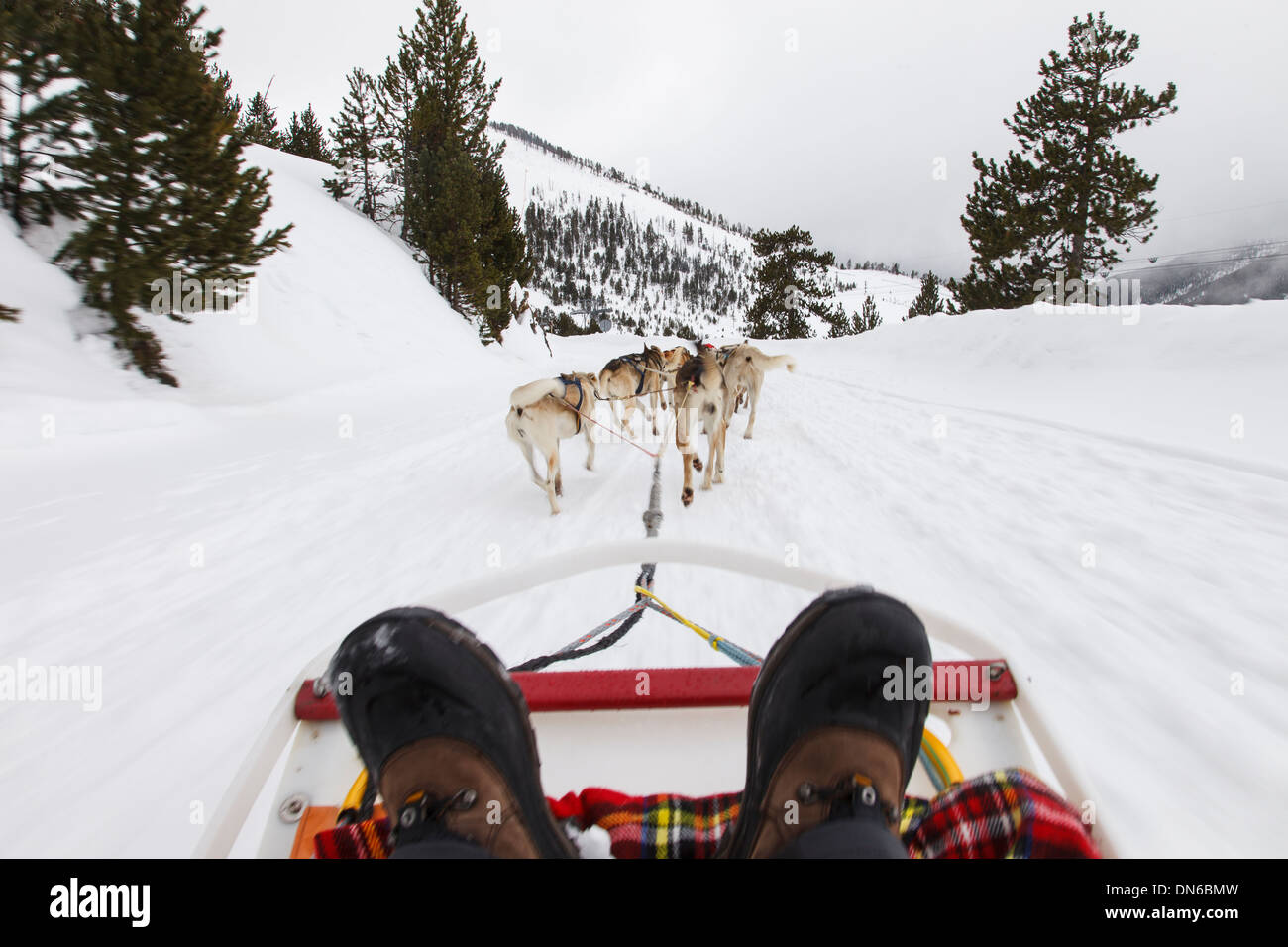 Musing in winter. Vallnord ski resort. Andorra - Stock Image