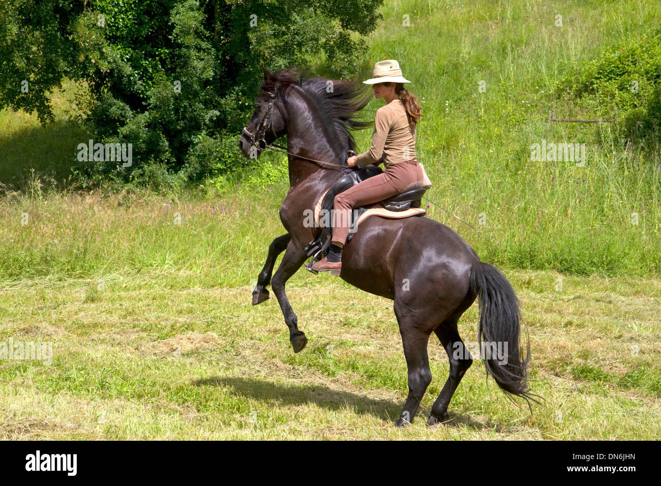 French woman riding her horse on a farm near Angouleme in