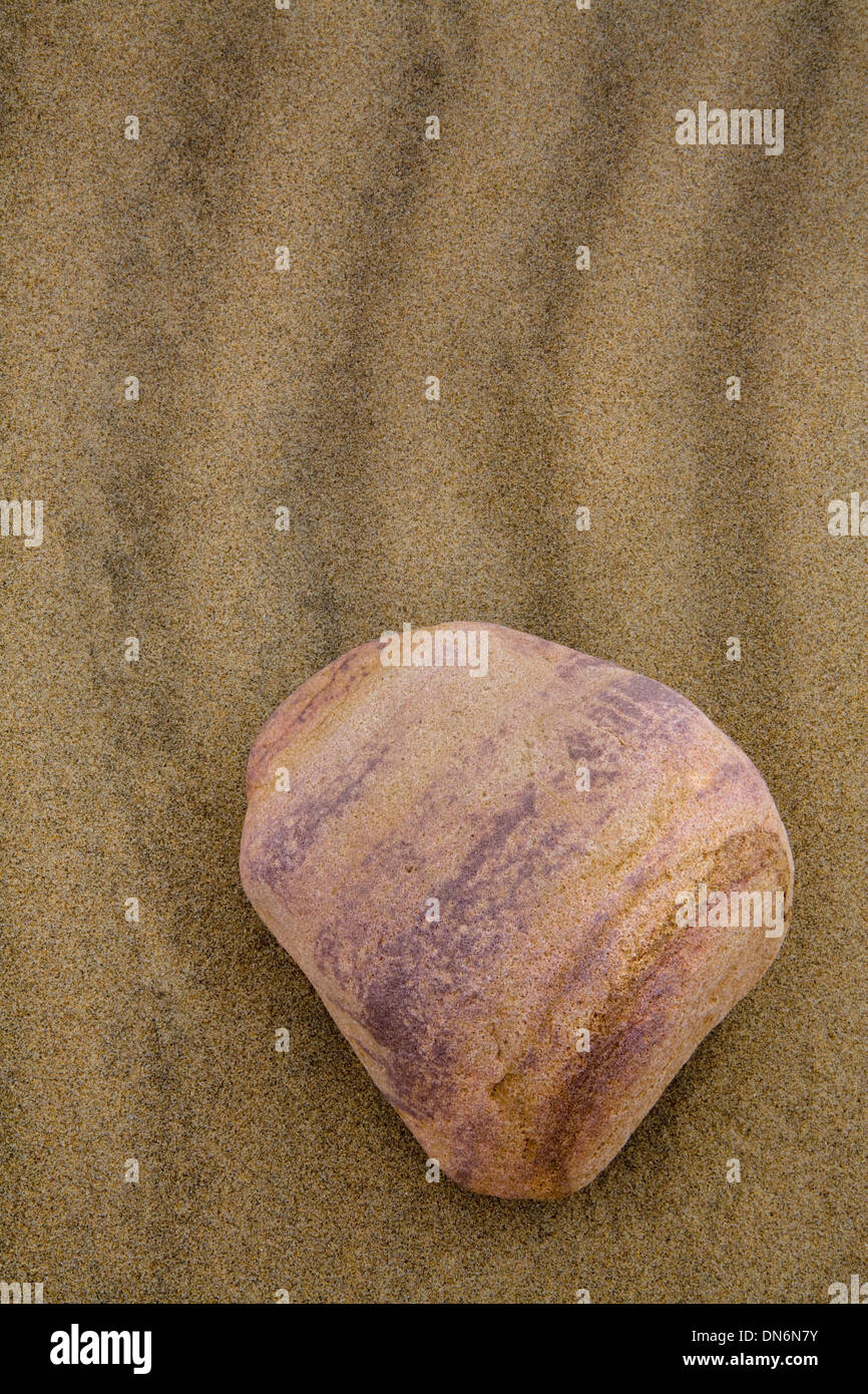 The lines on a pebble on the beach at Rhosilli Bay match the wave ripples in the sand Stock Photo